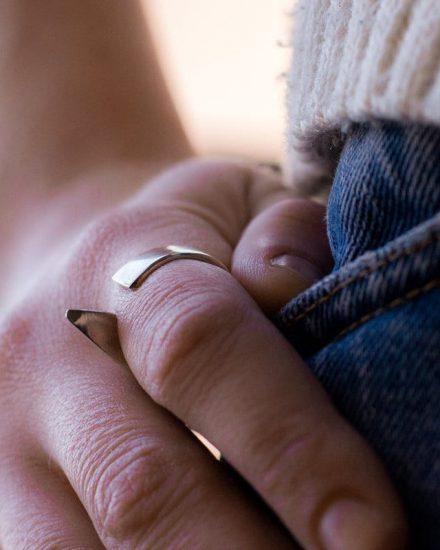 Flipper silver ring